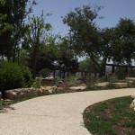 parkways חיבור אל הטבע- גן תנכי- אונ' מורמונית