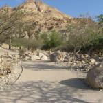 parkways חיבור אל הטבע- נחל דוד-עין גדי